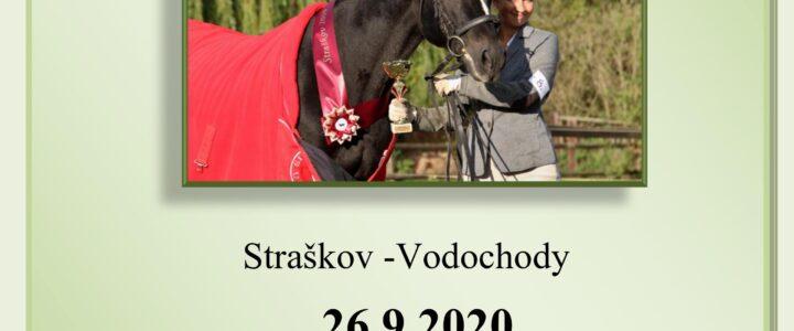 2.česká výstava plemene connemara Straškov 2020